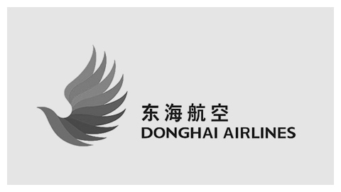 Donghai Airlines 深圳東海航空 标志