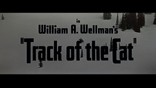 Track of the Cat 1954 movie title