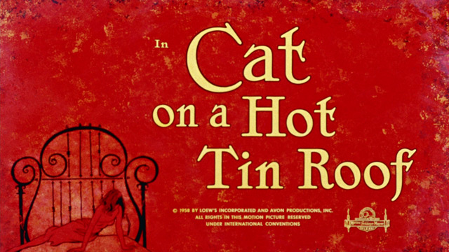 essays about cat on a hot tin roof humour In cat on a hot tin roof a southern family meet to celebrate 'big daddy' pollit's birthday: gooper with his wife and children, his brother brick - an.