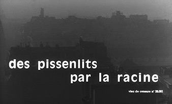 Des pissenlits par la racine / Dandelions by the Roots (1964) Mireille Darc - blu-ray movie title