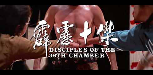 Disciples of the 36th Chamber (1985) movie title